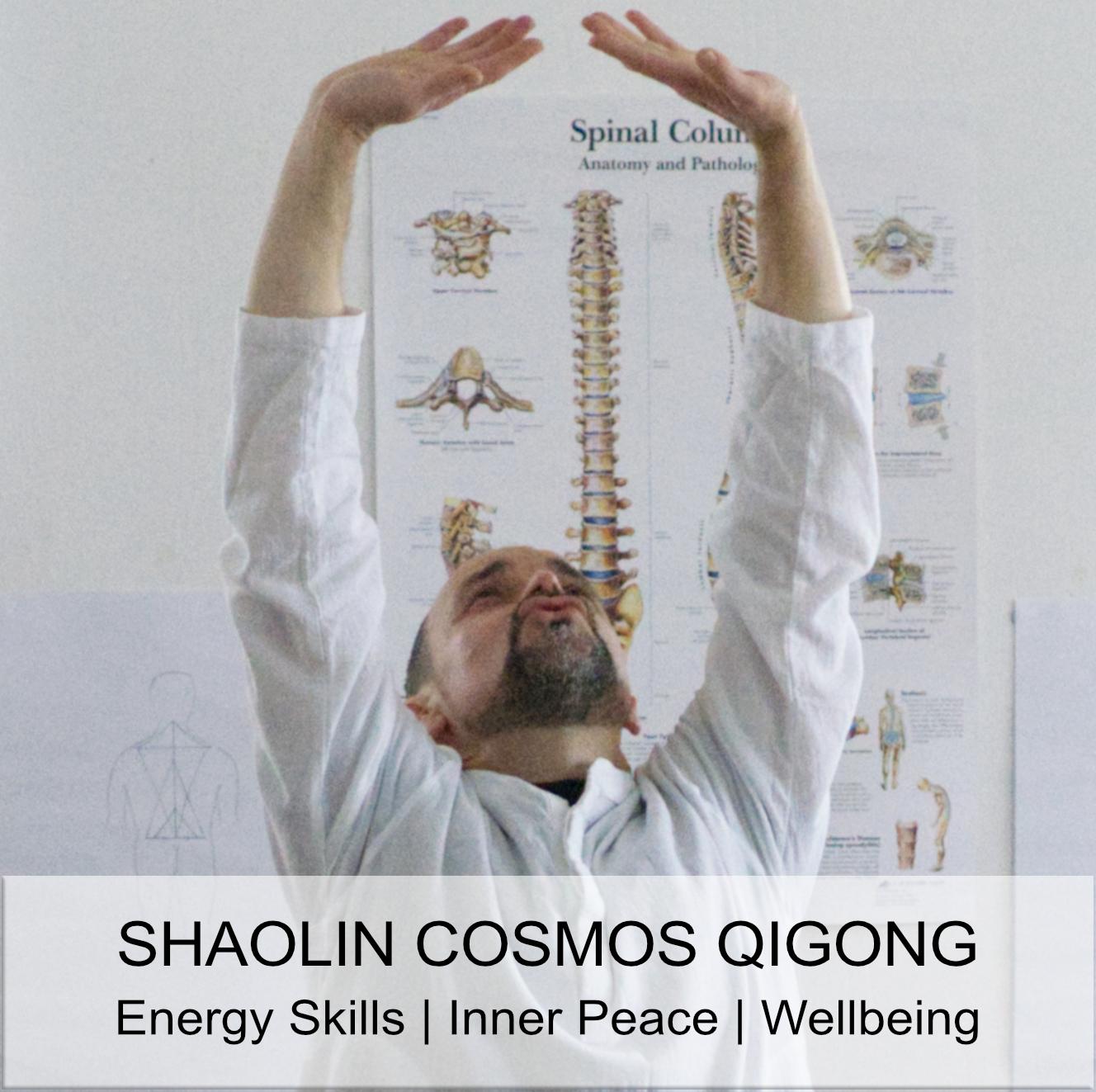 Shaolin Cosmos Qigong Class in Chichester